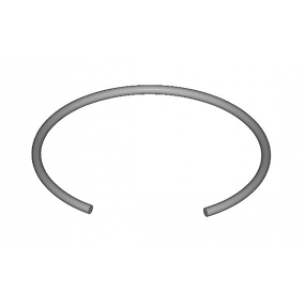 Retainer ring SW 160-FDST