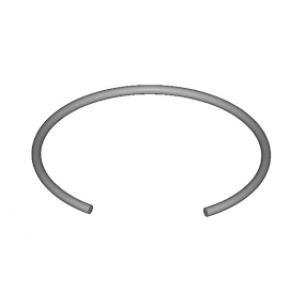 Retainer ring SB 200-FDST